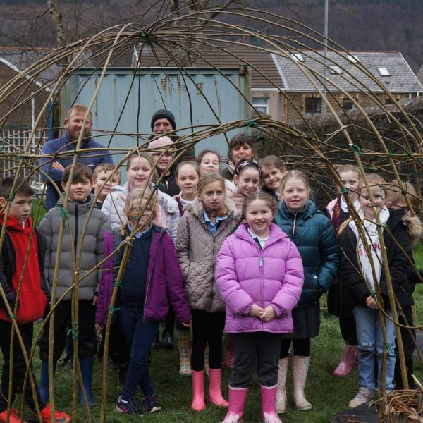 Ynysfach School willow dome.